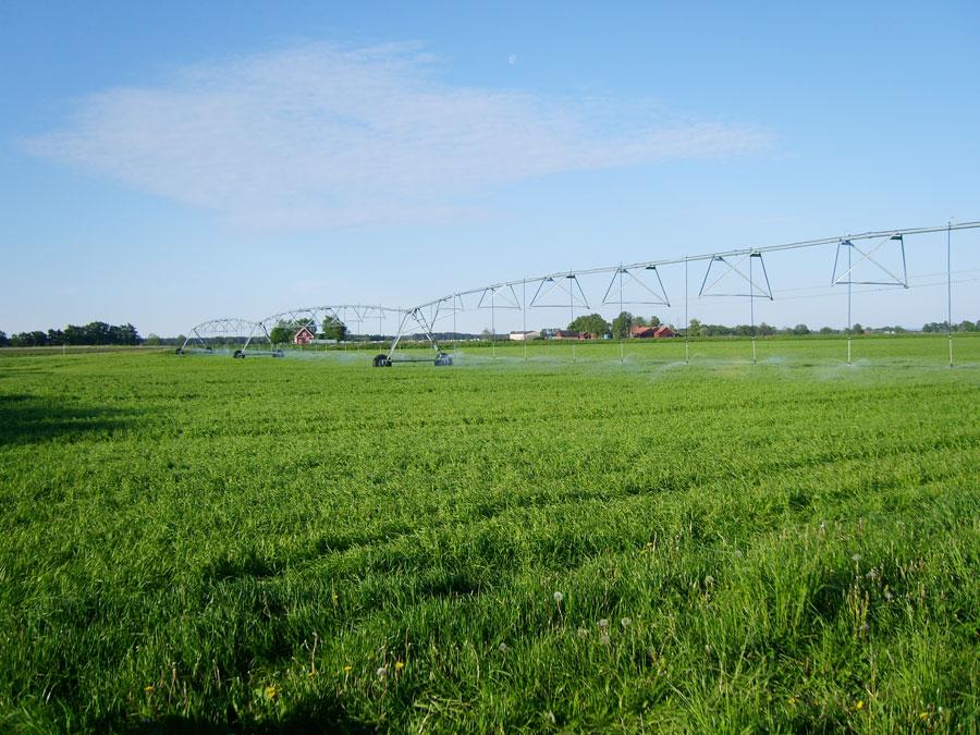 Spridarna är av typ rotator och sprider upp till 9 meter med låg bevattningsindensitet.